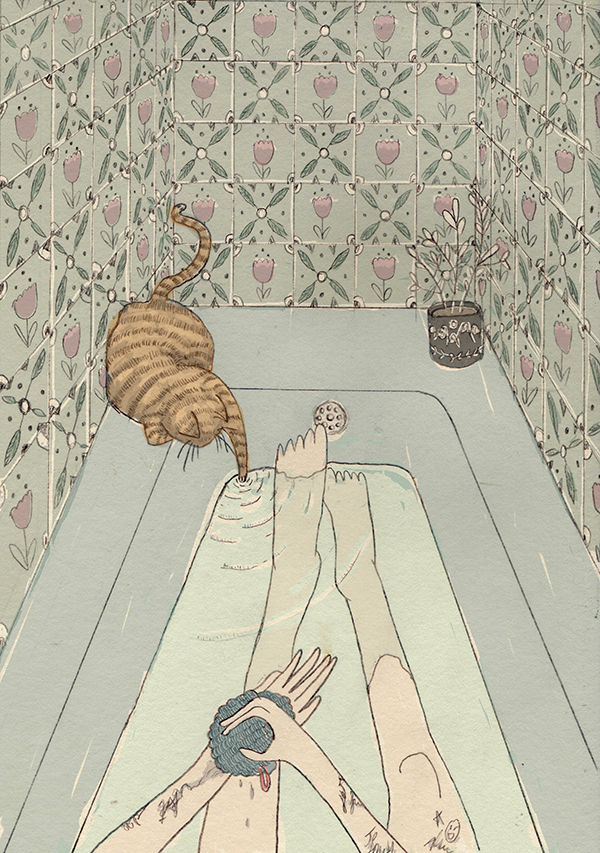 Bath_and_cat_fin-
